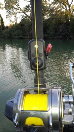 Geflochtene Wallerschnur euro-som ARANEA 1000 Meter / 0,70mm-74kg